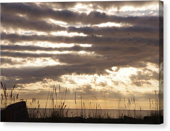 At Dusk West Coast Bc Canada Canvas Print by Ming Yeung