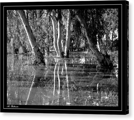 At The Swamp 2 Canvas Print