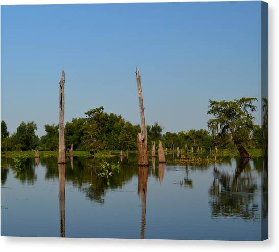 Atchafalaya Basin Canvas Print - Atchafalaya Basin 18 by Maggy Marsh
