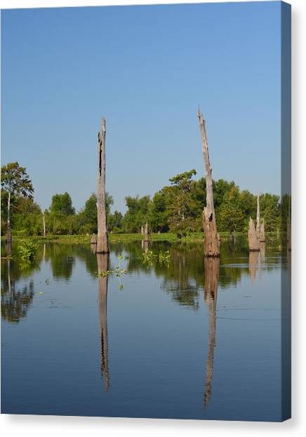 Atchafalaya Basin Canvas Print - Atchafalaya Basin 19 by Maggy Marsh