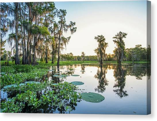 Atchafalaya Basin Canvas Print - Atchafalaya Basin Sunrise by Andy Crawford