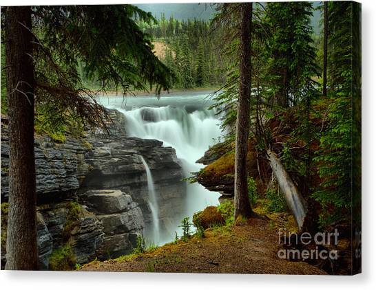 Athabasca Falls Canvas Print - Athabasca Falls Through The Forest by Adam Jewell