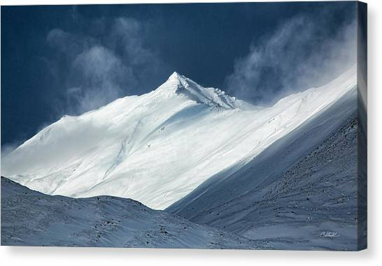 Atigun Pass In Brooks Range Canvas Print