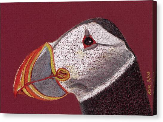 Atlantic Puffin Profile Canvas Print