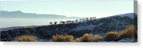 Atop Peavine Mountain Canvas Print by Edward Hass