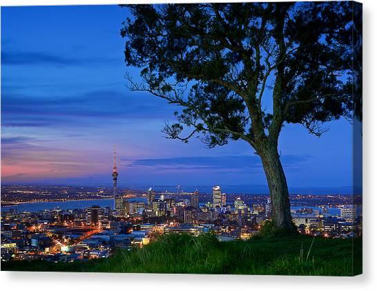 Auckland Canvas Print