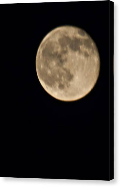 August Moon Canvas Print by Bill Perry