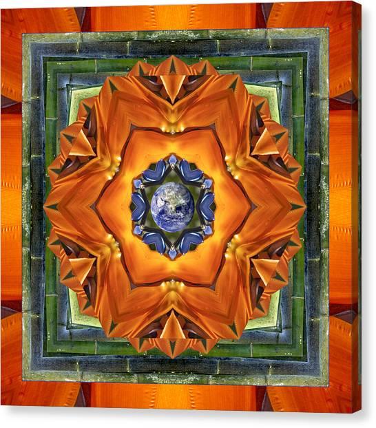 Aura Bamboo Canvas Print
