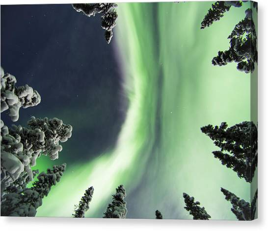 Aurora Lying On Your Back Canvas Print