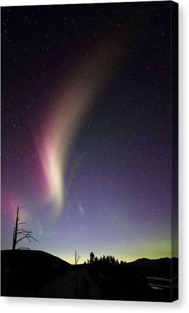 Auroral Phenomonen Known As Steve 2 Canvas Print by Jean Clark
