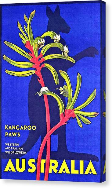 Kangaroo Canvas Print - Australia, Kangaroo Paws by Long Shot