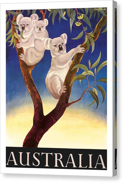 Koala Canvas Print - Australia Koala Vintage World Travel Poster By Eileen Mayo by Retro Graphics