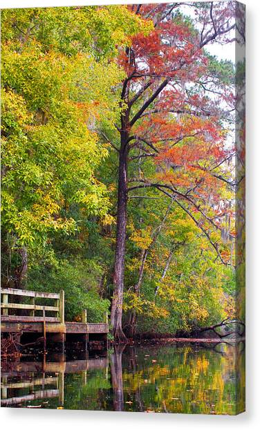 Autumn Along Brices Creek Canvas Print
