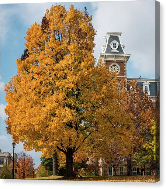 University Of Arkansas Canvas Print - Autumn And Old Main - University Of Arkansas by Gregory Ballos