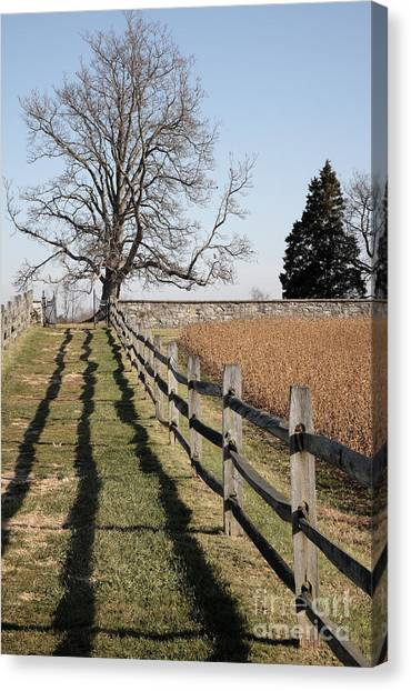 Autumn At Antietam Canvas Print