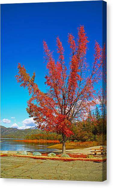 Water Skis Canvas Print - Autumn At Brandy Creek by Joyce Dickens