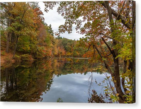 Autumn At Hillside Pond Canvas Print