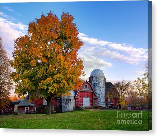 Autumn At Lusscroft Farm Canvas Print