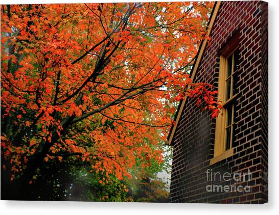 Autumn At The Window Canvas Print