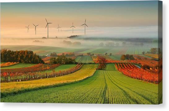 Foggy Canvas Print - Autumn Atmosphere In Vineyards by Matej Kovac