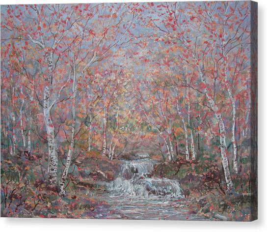 Autumn Birch Trees. Canvas Print