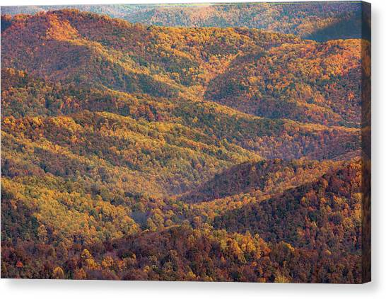 Autumn Blanket Canvas Print