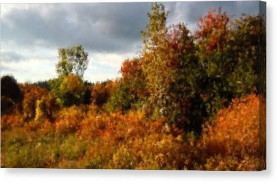 Autumn Calico Along The Arroyo El Valle New Mexico Canvas Print by Anastasia Savage Ealy
