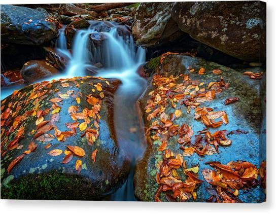 Chimney Tops Canvas Print - Autumn Cascade In The Smokies by Rick Berk