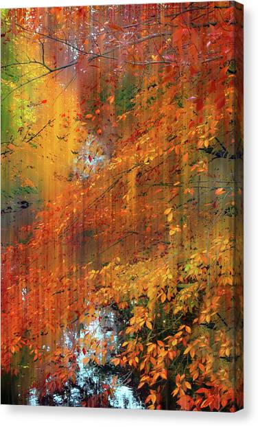 Canvas Print featuring the photograph Autumn Cascade by Jessica Jenney