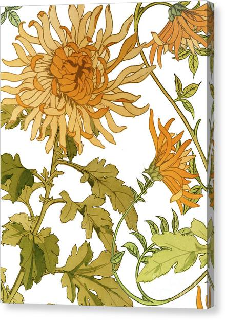 Autumn Canvas Print - Autumn Chrysanthemums I by Mindy Sommers