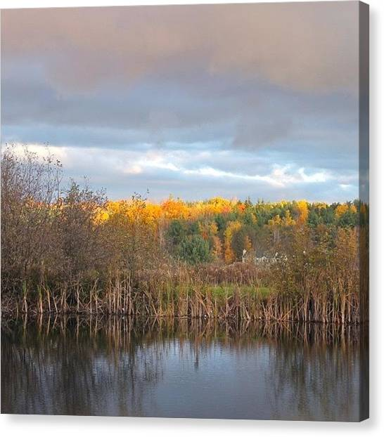 Ponds Canvas Print - Autumn Color Gray Sky  by Justin Connor