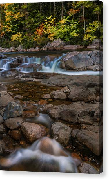 Autumn Colors In White Mountains New Hampshire Canvas Print