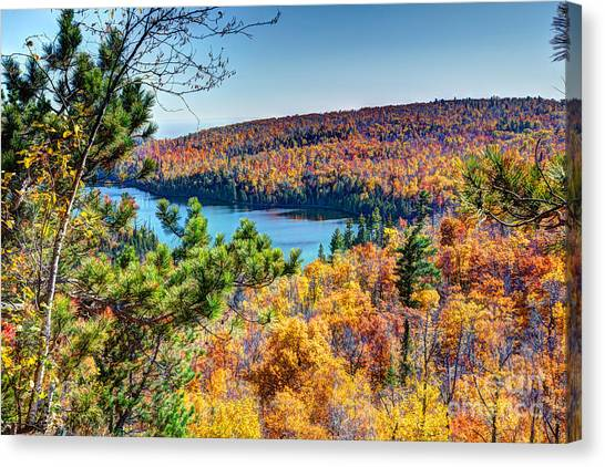Autumn Colors Overlooking Lax Lake Tettegouche State Park II Canvas Print