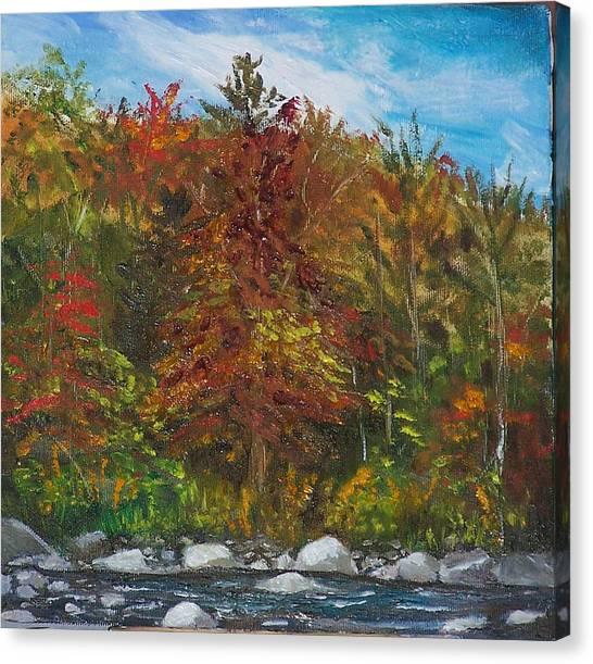 Autumn Colors Canvas Print by Pamela Wilson