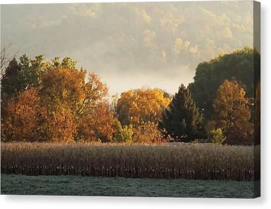 Autumn Cornfield Canvas Print
