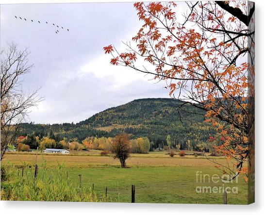 Autumn Country View Canvas Print