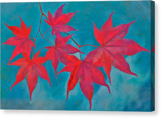 Autumn Crimson Canvas Print