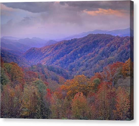 Canvas Print featuring the photograph Autumn Deciduous Forest Great Smoky by Tim Fitzharris