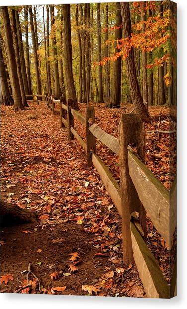 Canvas Print featuring the photograph Autumn Fence by Angie Tirado