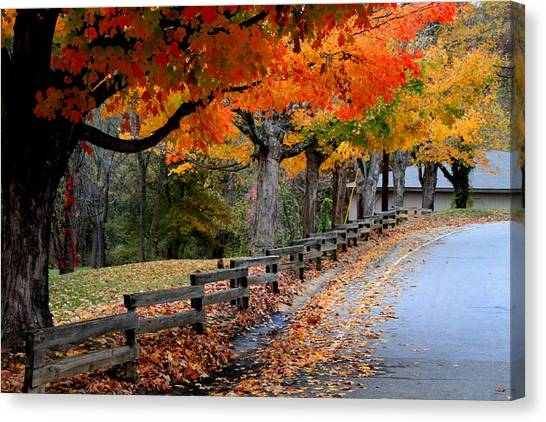 Autumn Fence Canvas Print by Gary Bydlo