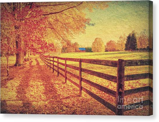 Autumn Fences Canvas Print