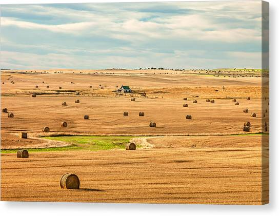 Hay Bales Canvas Print - Autumn Fields by Todd Klassy