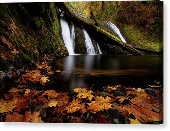 Autumn Flashback Canvas Print