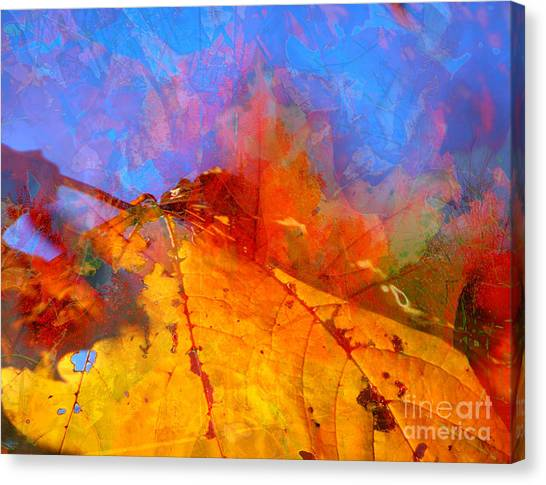 Autumn Fusion 1 Canvas Print