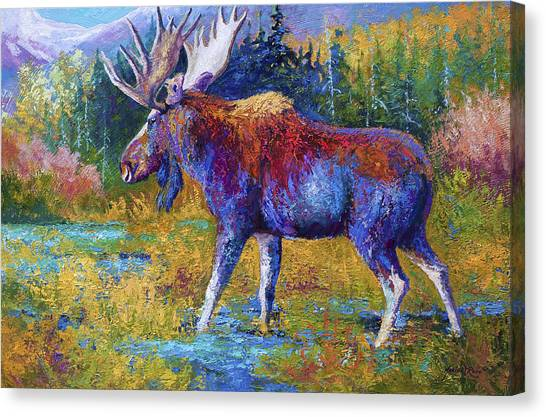 Moose Canvas Print - Autumn Glimpse by Marion Rose