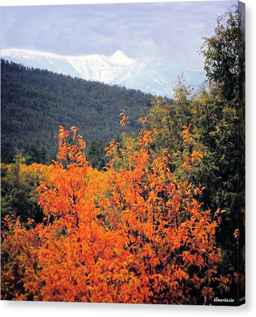 Autumn Glory And Mountain Cathedral Canvas Print by Anastasia Savage Ealy