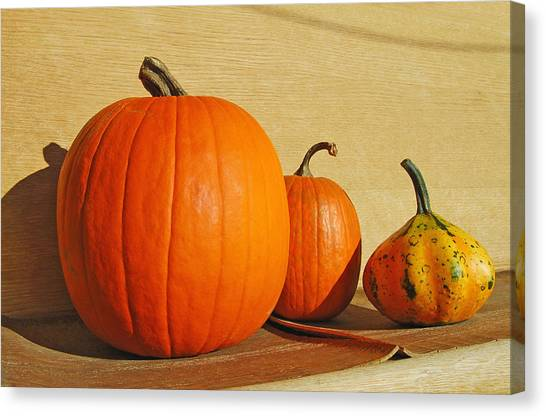 Autumn Harvest Still Life Canvas Print by Tony Ramos