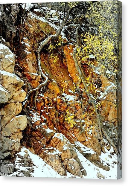 Autumn High.. Canvas Print by Al  Swasey