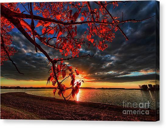 Saskatchewan Canvas Print - Autumn Illumination by Ian McGregor