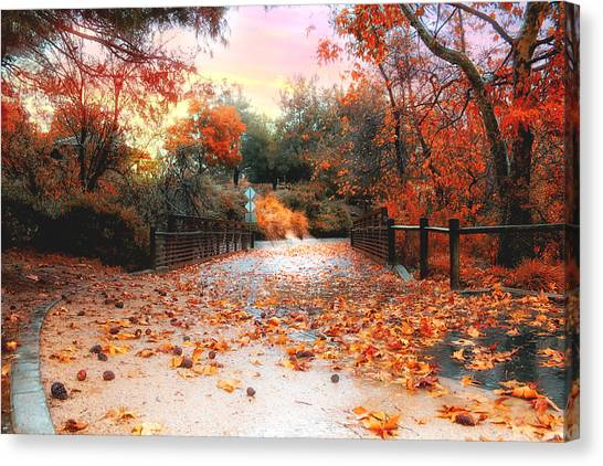 Autumn In Discovery Lake Canvas Print